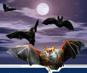 Энергетические вампиры