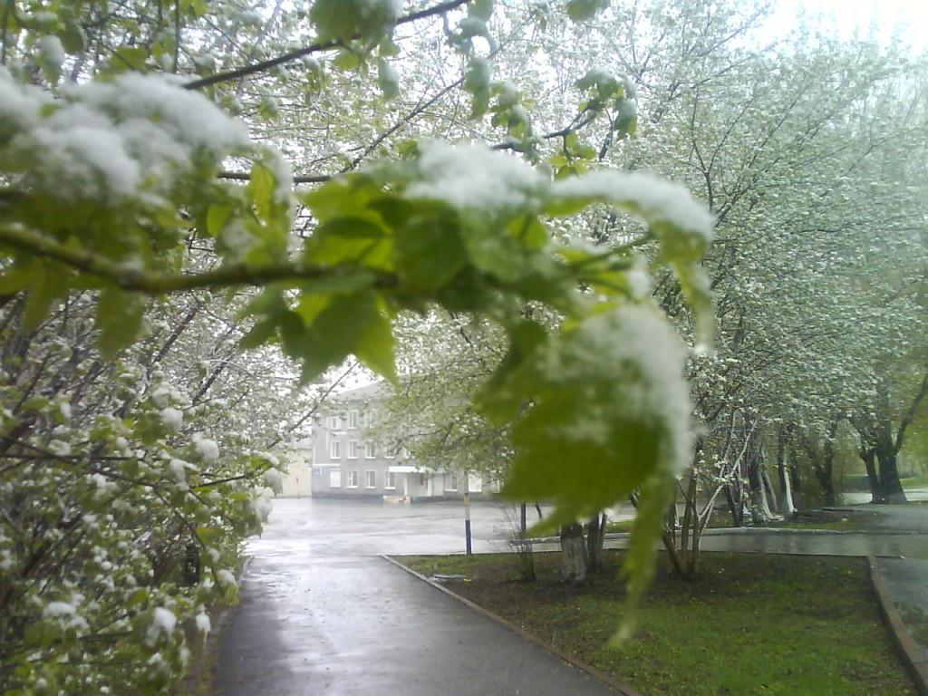 снег в мае